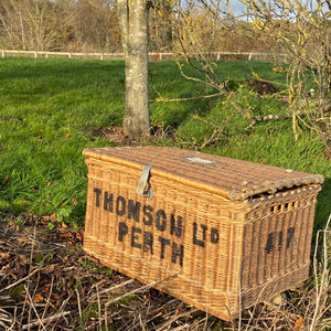 NEW - Perth Thomson Ltd Laundry Wicker Trunk