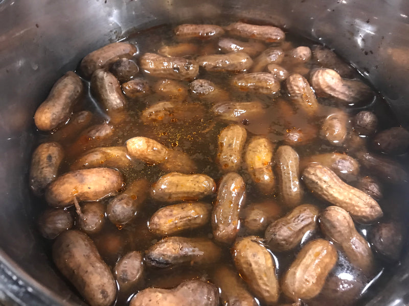 Instant Pot Boiled Peanuts with Zest Coast Seasonings