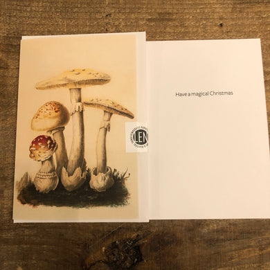 Magic Mushroom Christmas Card