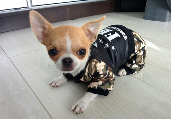 """FBI"" High Quality Outfit For Small Dogs, , DogGiftShop, DogGiftShop"