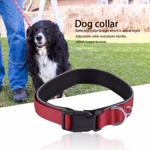 Adjustable Padded Dod Collar, , DogGiftShop, DogGiftShop