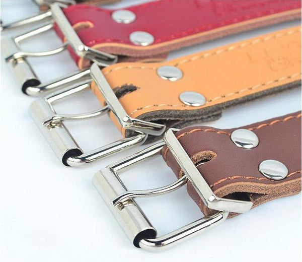 Genuine Leather & Stainless Steel Metal, High Quality Collar, , DogGiftShop, DogGiftShop