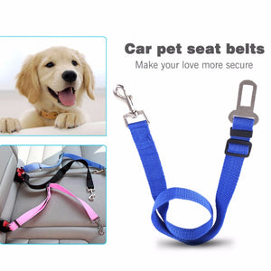 2017 Blue Automotive Retractable Vehicle Mounted Dog Leash Flexible Titanium Adjustable Button Design Pet Safety Belt