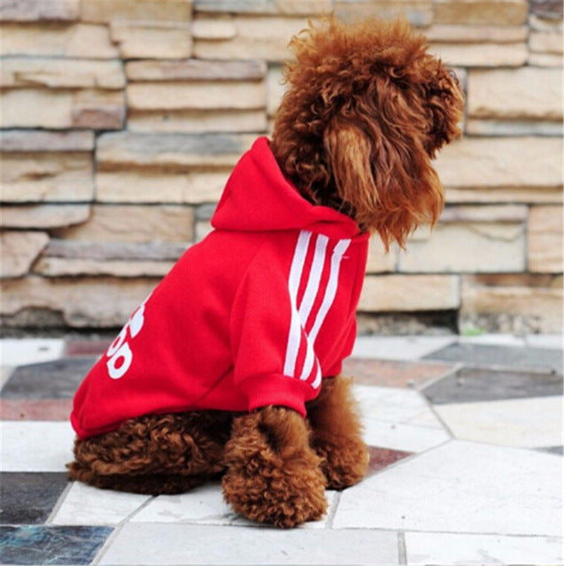 Cool Dog Hoodies 100% Cotton - DogGiftShop