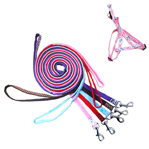 2017 New Pets Puppy Lead Harness Strengthen Colorful Leash Nylon High Quality
