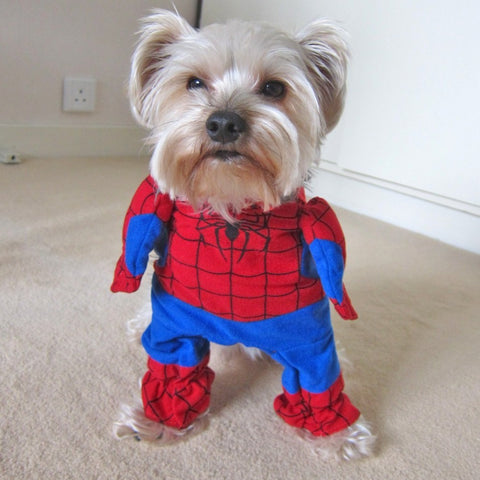 """Spiderman"" Dog Costume Suit, , DogGiftShop, DogGiftShop"