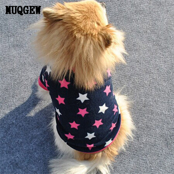 """Stars"" Cool T-Shirt For Small Dogs, , DogGiftShop, DogGiftShop"
