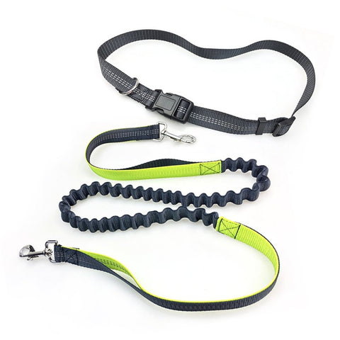 2017 Elastic Running Pet Dog Leash Adjustable Waist Padded with Reflective Yarn Dog Running Rope Hands Free Doing Sports, , DogGiftShop, DogGiftShop