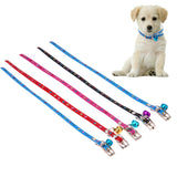5Pcs Collars For Small Puppies, , DogGiftShop, DogGiftShop