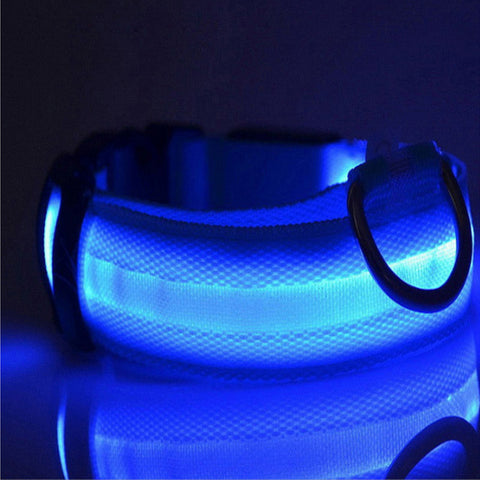 Advanced Safety Flash Led Collar, , DogGiftShop, DogGiftShop