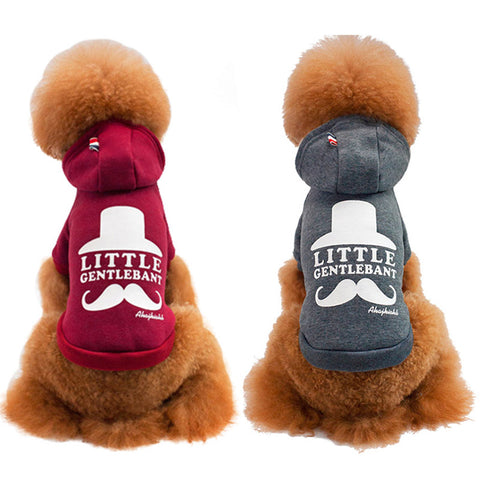 New hondenkleding Warm Dog Clothes Cotton Winter Dog Clothes For Small Dog Coat Jackets Chihuahua York Pet Supply 30F1