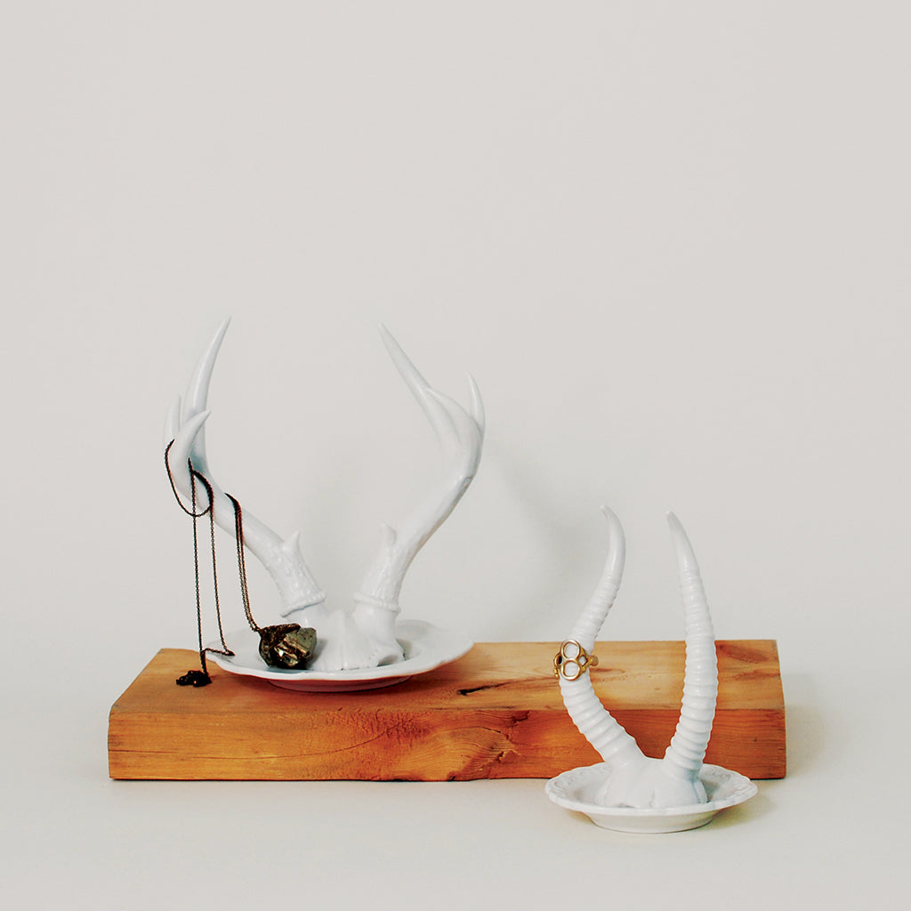Royal Tine Antelope Antler Jewelry Holder