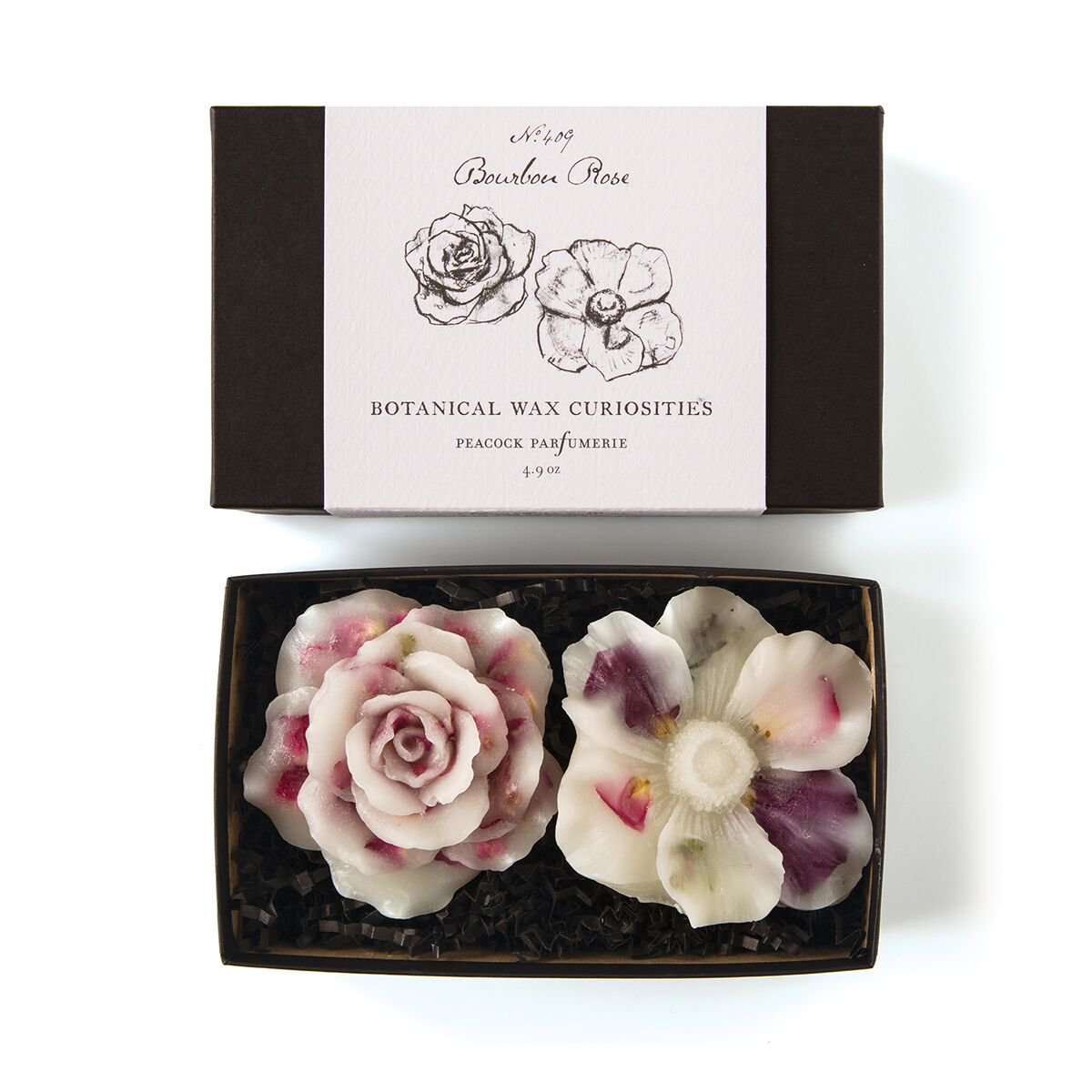 Botanical Wax Curiosities – Bourbon Rose (Flowers)