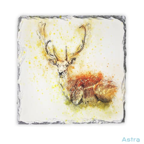 Abstract Deer Square Photo Slate Home Decor 10-20 Homedecor Household-1 Photo-Slate Photo-Slates $16.95 Astraest.com: Astraest