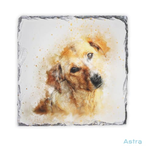 Abstract Dog Square Photo Slate Home Decor 10-20 Homedecor Household-1 Photo-Slate Photo-Slates $16.95 Astraest.com: Astraest