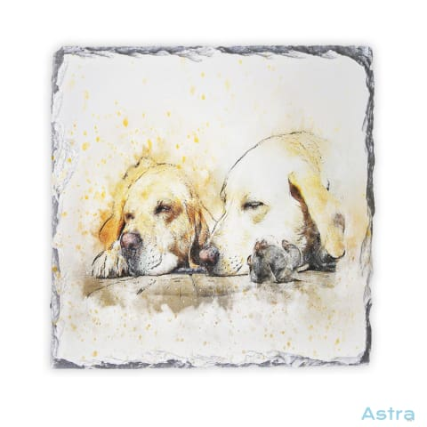 Abstract Sleeping Dogs Square Photo Slate Home Decor 10-20 Homedecor Household-1 Photo-Slate Photo-Slates $16.95 Astraest.com: Astraest