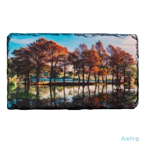 Island Of Trees Rectangle Photo Slate Home Decor 10-20 Homedecor Household-1 Photo-Slate Photo-Slates $16.95 Astraest.com: Astraest