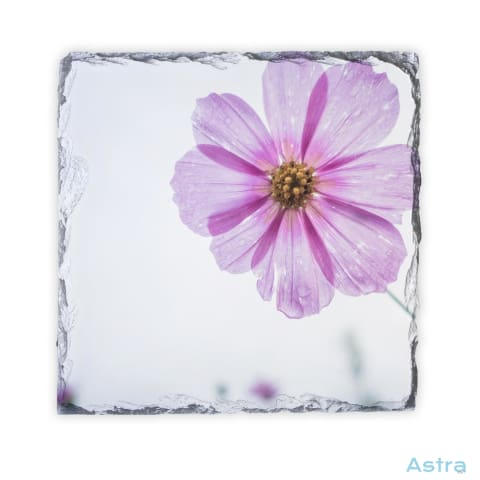 Purple Flower Square Photo Slate Home Decor 10-20 Homedecor Household-1 Photo-Slate Photo-Slates $16.95 Astraest.com: Astraest