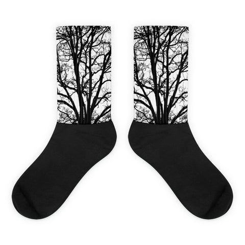 Bare Tree Socks