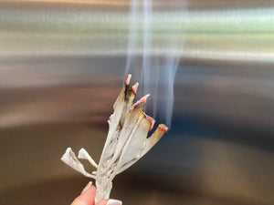 Sage  dried for smudging