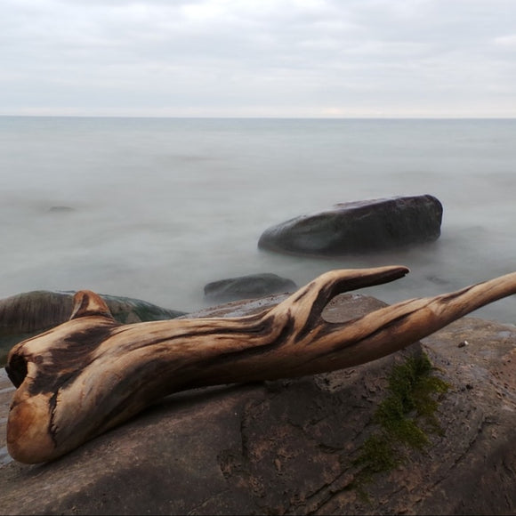 Masculine Collection