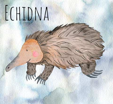 Echidna Wax Melts