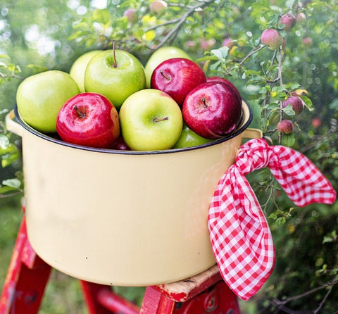 Apple Picking Wax Melts