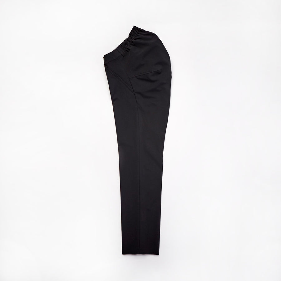 Seated Dress Pant
