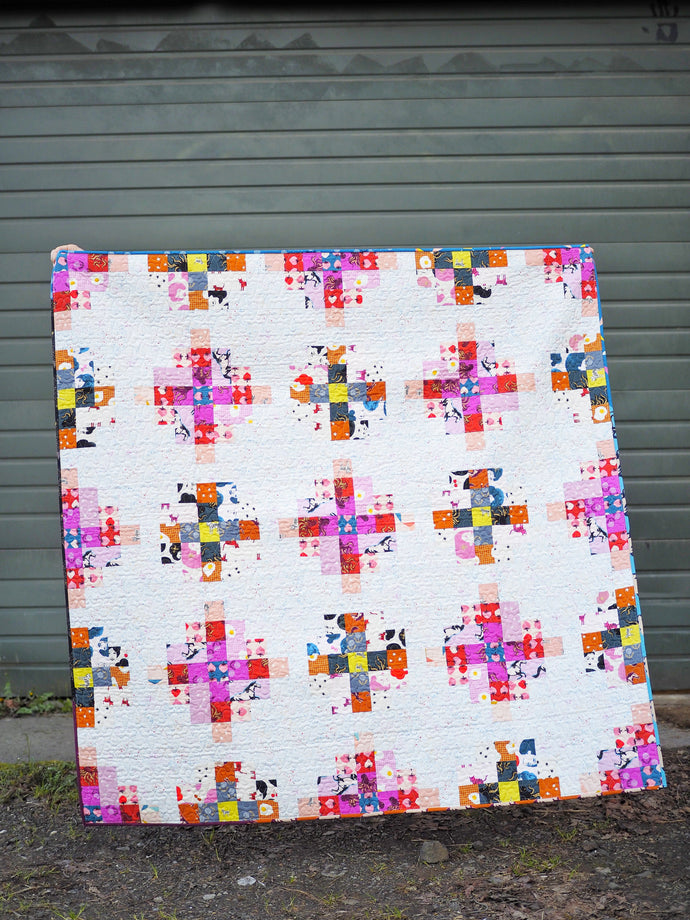 Granny Cabin Quilt - the Darlings One