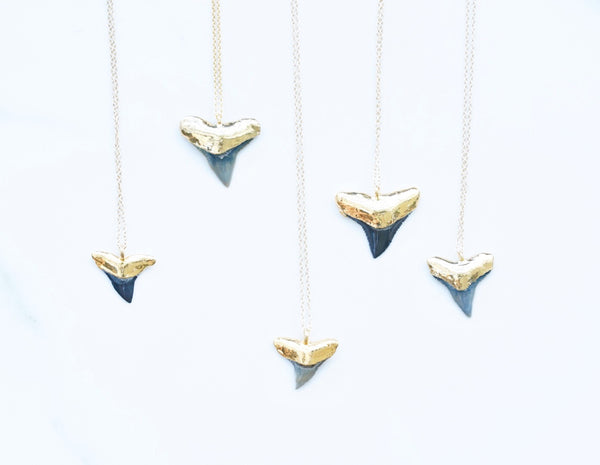 Gold-dipped Fossilized Shark Tooth Necklace