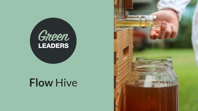 Flow Hive is bringing honey to the people — the future of sustainable business