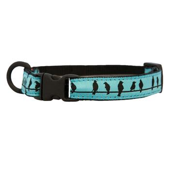Kitty Breakaway Cat Collar - Bird on a Wire - Treat Your Dog Good