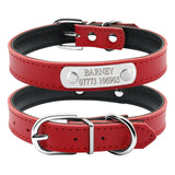 Engraving Metal Buckle Dog Collars - Treat Your Dog Good