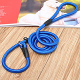 Nylon Rope Training Leash Slip Lead Strap - Treat Your Dog Good