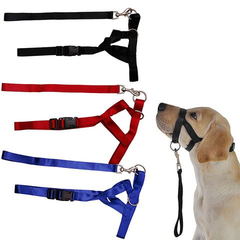 Dog Puppy Head Collar - Treat Your Dog Good