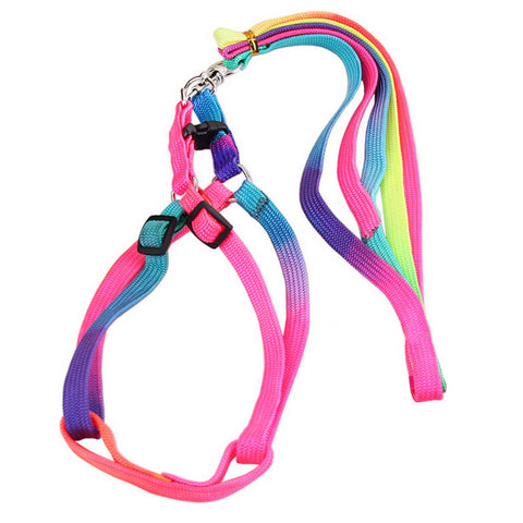 Best Selling Colorful Animals Cat Leash - Treat Your Dog Good