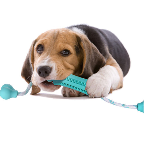 Rubber Dental Massaging Dog Toys - Treat Your Dog Good