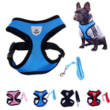 Cute Small Nylon Dog Harness - Treat Your Dog Good