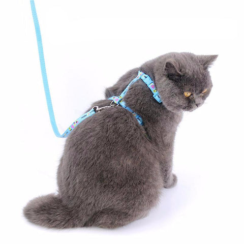 Cat cotton Chest Strap Leashes - Treat Your Dog Good