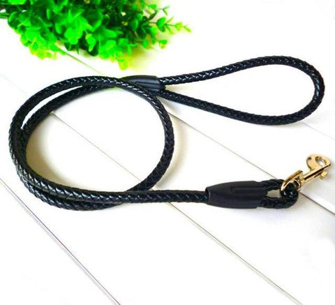 leashes Rope slip Lead Hand Strap - Treat Your Dog Good