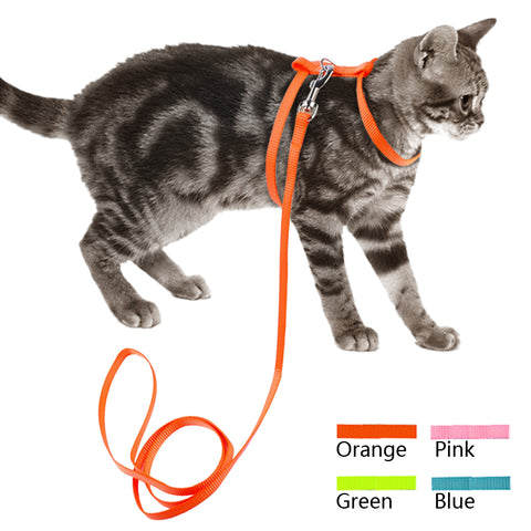Nylon Cat Harness & Leash Set - Treat Your Dog Good
