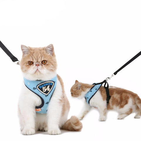 Cat Harness Vest Leashes - Treat Your Dog Good