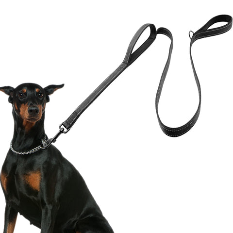 Nylon Padded Double Handle Leash For Dog - Treat Your Dog Good