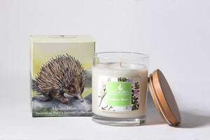 Alpine Mint Soy Candle