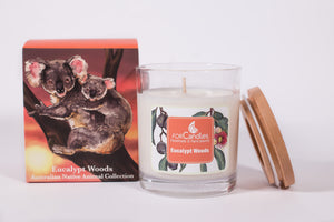 Eucalypt Woods Soy Candle