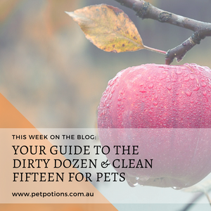 Australia's Secret Dirty Dozen