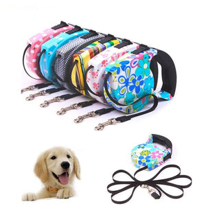 Pet Nylon Training Outdoor Running Retractable Leash