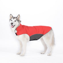 Large Pet Winter Waterproof Clothes- Dog Raintcoat Outdoor Jacket Coat  for Pugs Husky Pitbull Fleece Lining S - 5XL