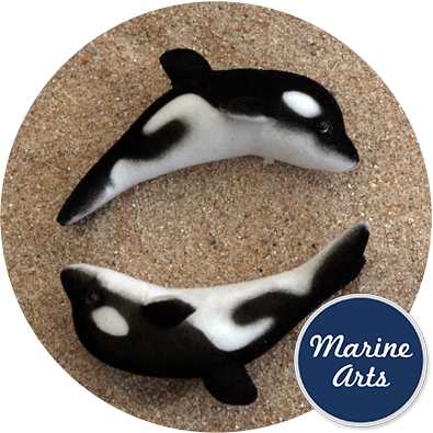 Flocked orca whale