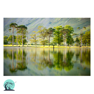 Buttermere Landscape Print by Nick Miners